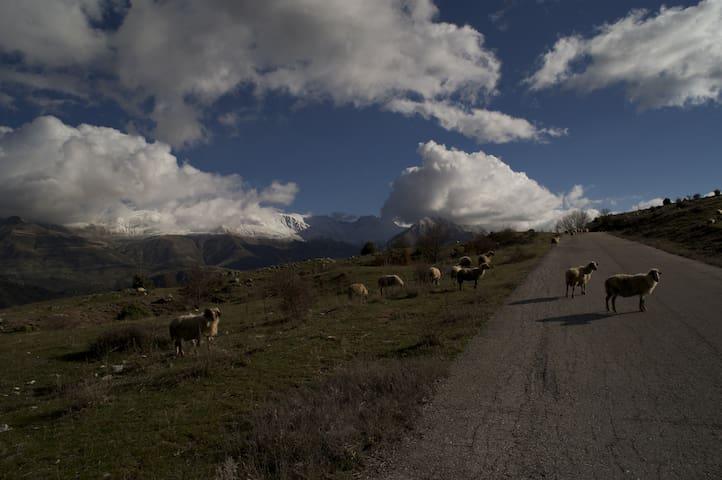 Syrrako , Epirus getaway - Tzoumerka - Rumah