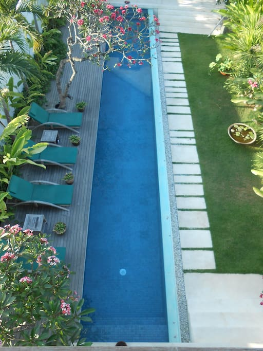 17 m pool. Sundeck. Tropical garden