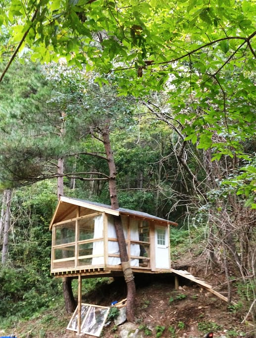 Glamping Treehouse Treehouses For Rent In Jinbu Myeon