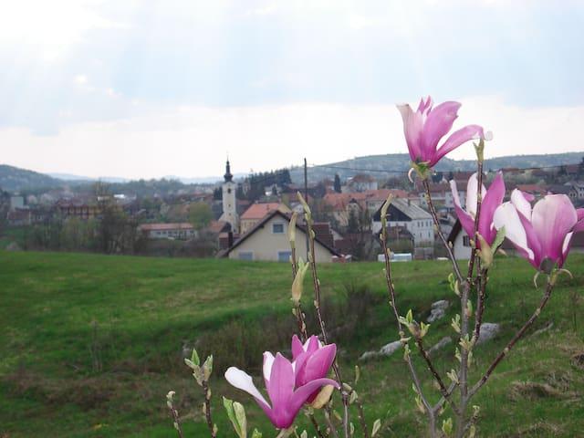 Garden view...spring..