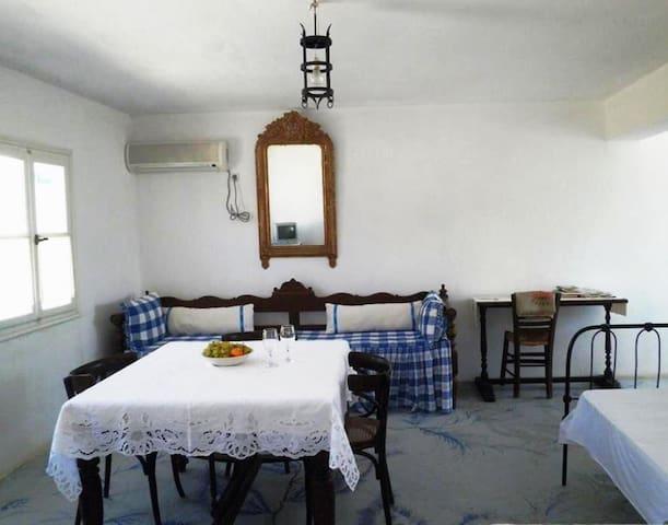 ΠΑΡΑΔΟΣΙΑΚΗ ΣΟΥΙΤΑ ΣΤΗ ΚΑΣΟ - Fri - Apartment