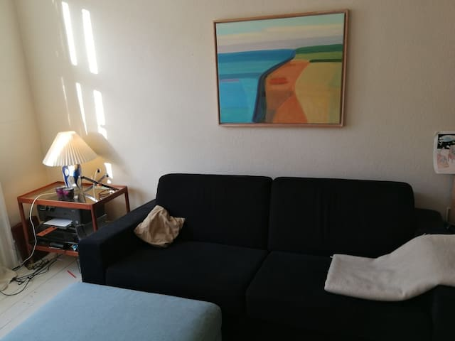 the comfy sofa bed