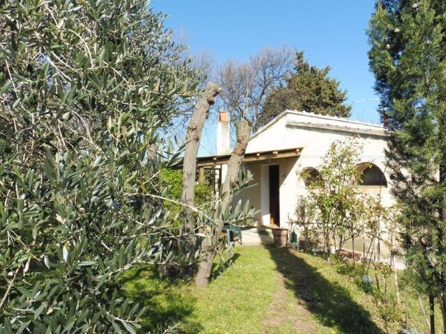 Delizioso bilocale indipendente con giardino - Castagneto Carducci - House