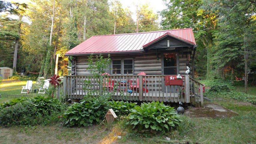Lake-view log cabin on Lake Huron