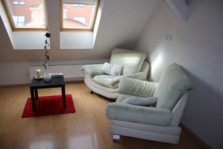 Studio Apartment in the centre - Prague - Loft