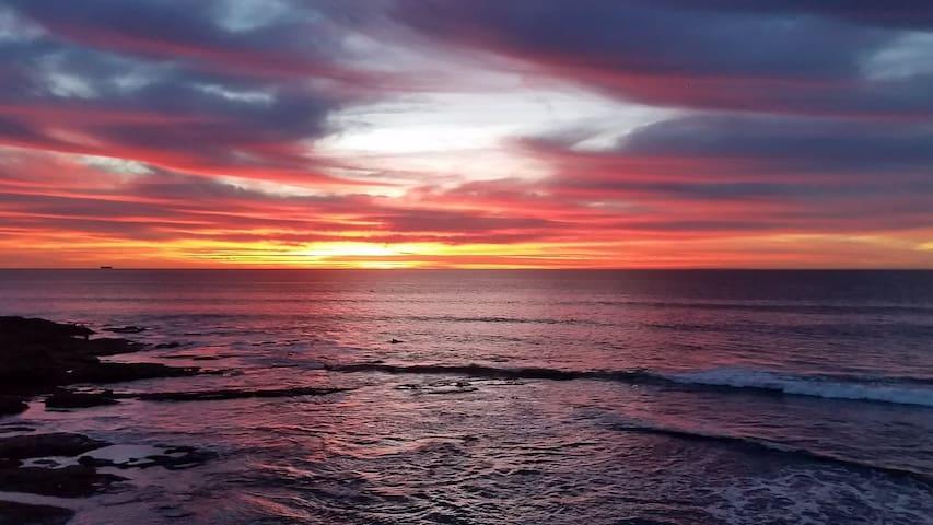 Ocean Beach Quiet Condo Steps to Pier, Sand & Surf