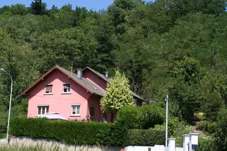 Situation très calme - Munster, Haut-Rhin