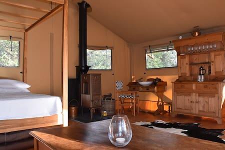 ABBOTT'S REST- A Definitive Safari Tent