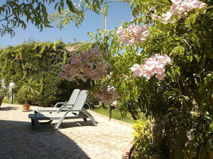 Lemon house for beach holidays, Villa Cerere
