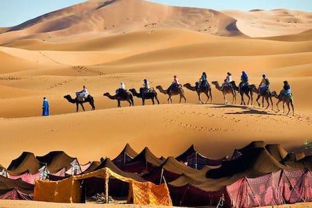 morocco  desert trips - Arfoud