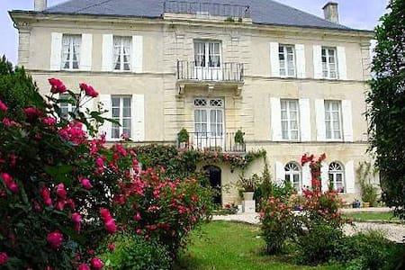 Chateau Cypres - Saint-Just-Luzac - Zamek