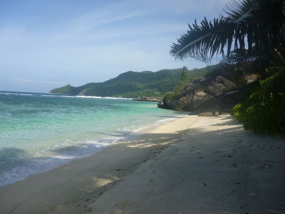 Anse Forbans beach is magnificent and undeveloped - 15 steps through our lush tropical garden!! Our Beach House is directly on this beach - no roads or houses between you and the beach!