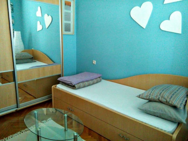 A recently refurbished room in the city centre - Novi Sad - Appartamento