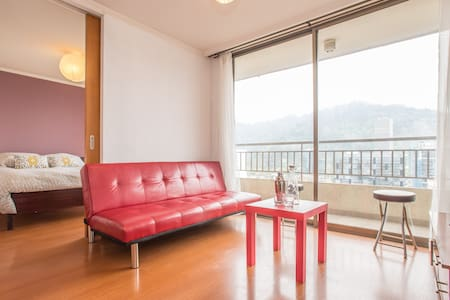 Comfy Bright Apt, Perfect Location - Santiago