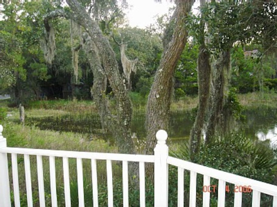 Tidal marsh view from rear deck