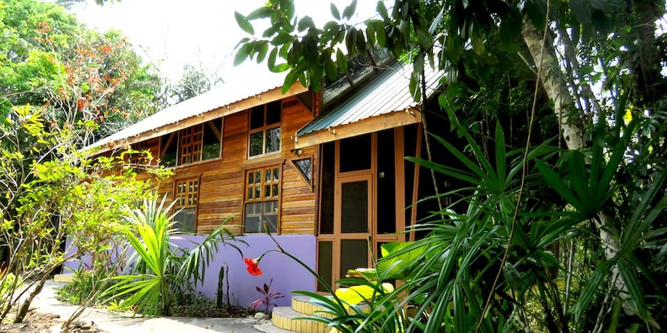 Beyond Paradise Belize Vacation Rental