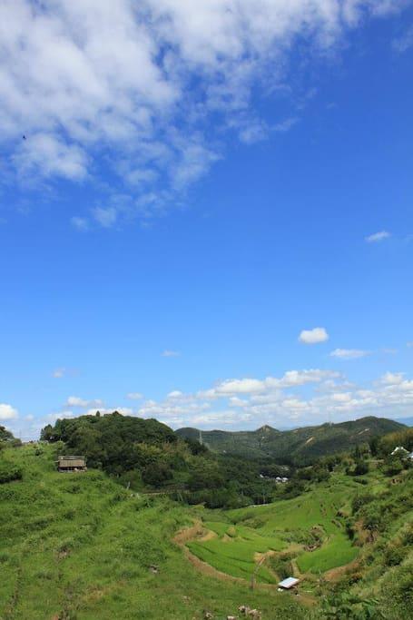 日本の原風景『棚田』を見ることができます。