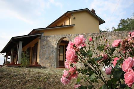 Arezzo:pool relax breathtaking view - Arezzo - Villa