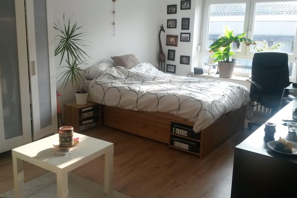 sch ne und helle 1 zimmer wohnung appartamenti in affitto a mannheim baden wurttemberg germania. Black Bedroom Furniture Sets. Home Design Ideas