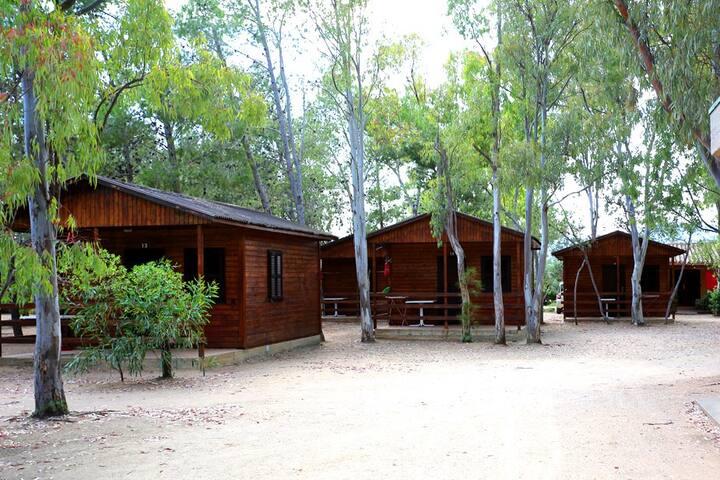 Bungalow Bilocale legno 4
