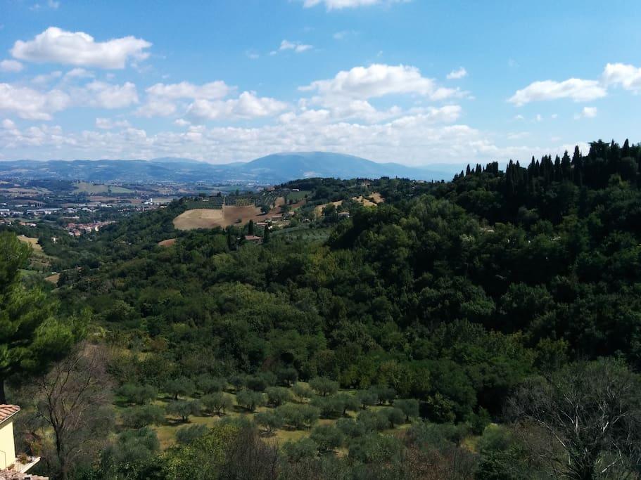 Vista dalla terrazza (parte II)