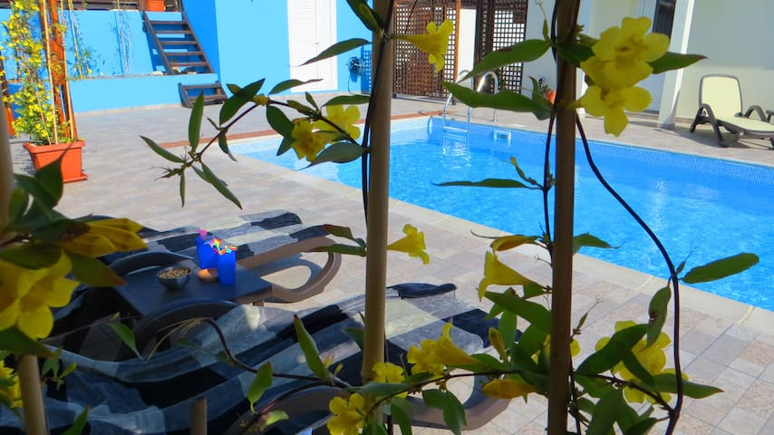 Self Catering Holiday Villa - Psematismenos