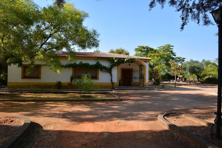 Casa Tilo .. en la Via de la Plata - Zafra - วิลล่า