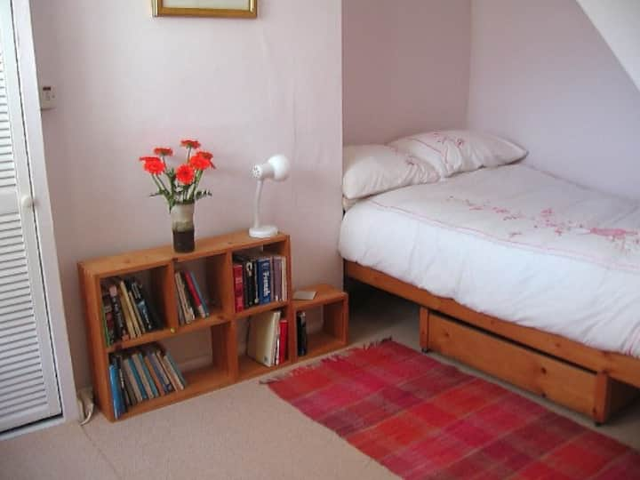 Light, airy single room. 10mins walk from Centre.