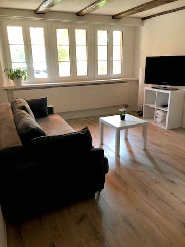 Cozy apartment close to Zurich Airport and City