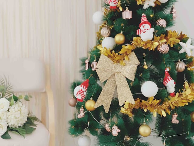【十二民宿】二七广场火车站 有圣诞树  入住送花  ins简约风   花墙 提供衣服 网红拍照 秋千