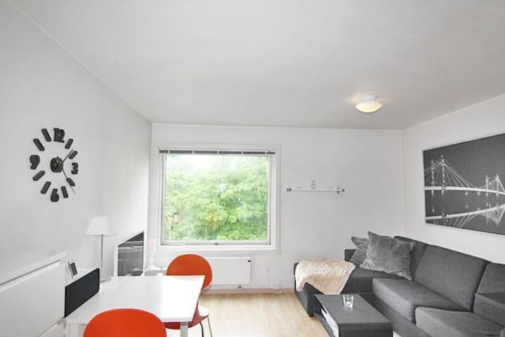 Modern apartment with great location in Oslo - Oslo - Appartement