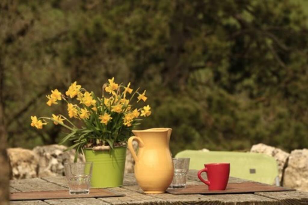 Temps calme sur la terrasse