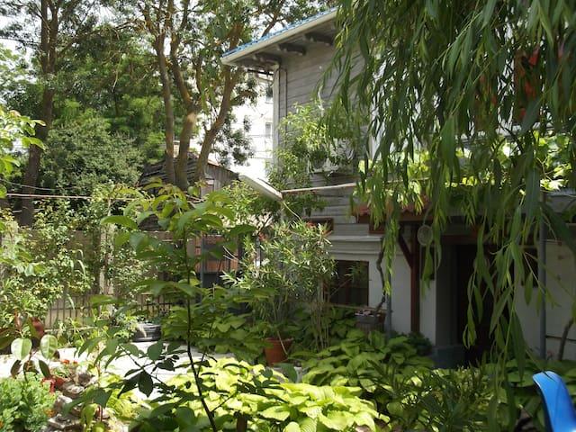 casa de vacanta Rodica 3