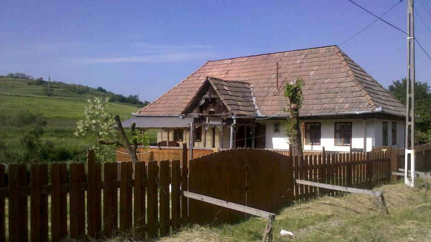 Transylvania; Rustic House - Poarta - Huis