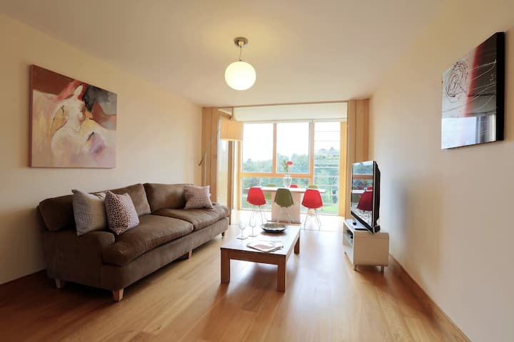 Large Sea View Apartment in the south Dublin
