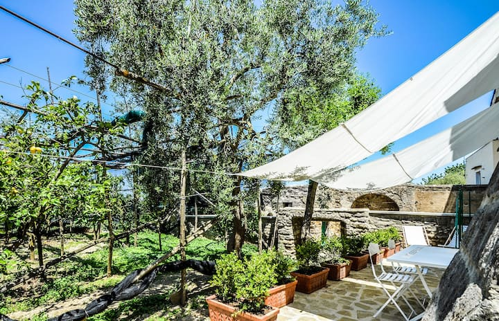 AMORE RENTALS - Casa Tiberio with Garden, private Terraces and Sea View