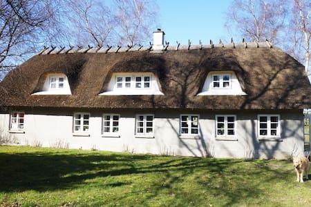 Værelse med stue og tagterrasse - Vejle - Haus