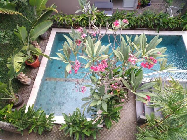 A Loft Apartment 9 w/ shared pool in Denpasar