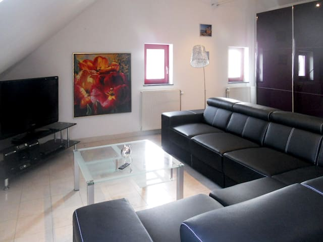 Charming flat with shared barbecue