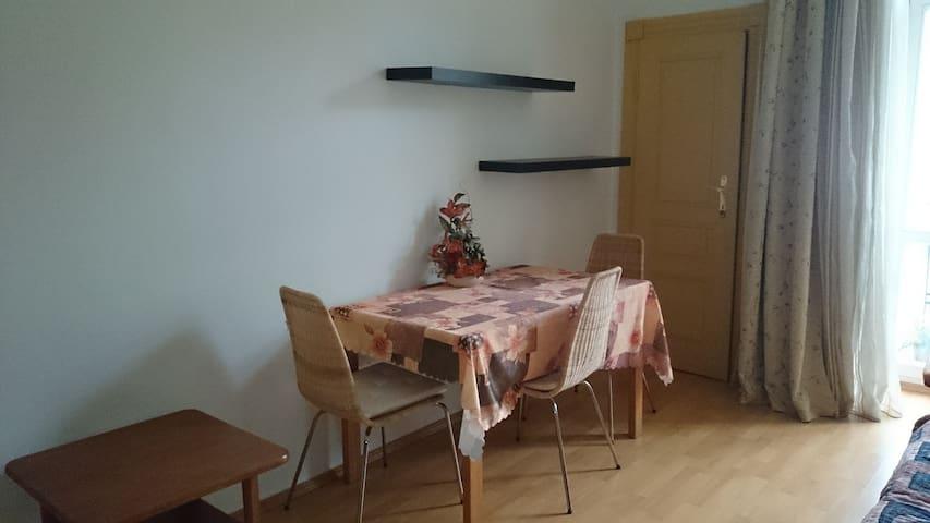 Cozy Apartment Near The City Center - Praha - Huoneisto