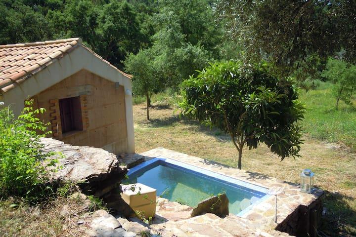 Ruhiges Cottage in São Luís Alentejo im Luxus der Natur