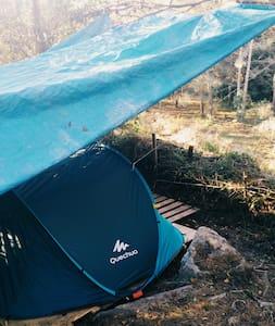 Recarga tus pilas - L'Avellà - Палатка