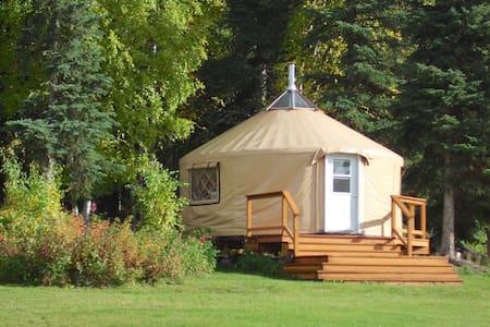 Just Short of Magic Yurt Stay B&B