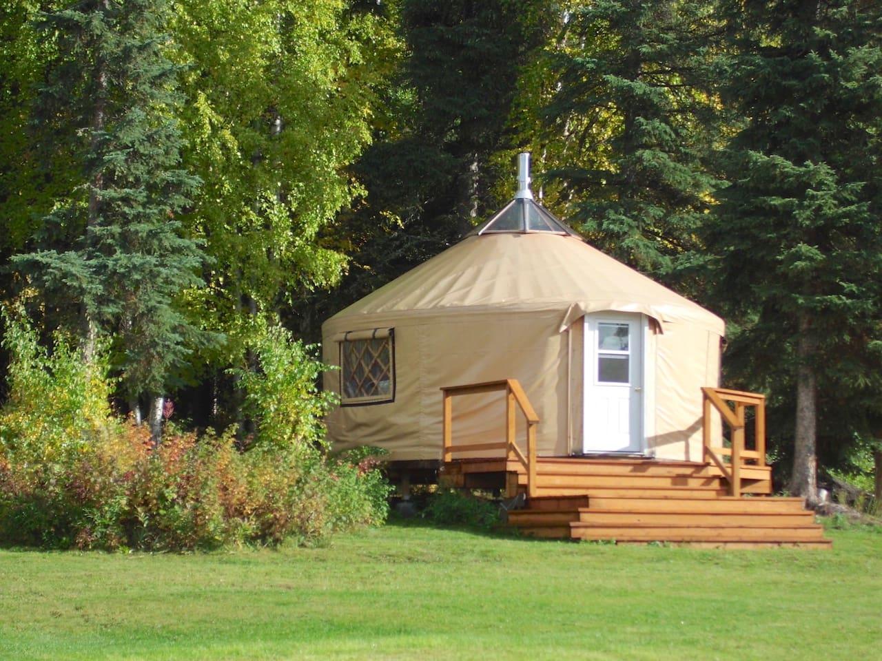 Cozy Alaskan Yurt - Hot Breakfast - Dog Sledding