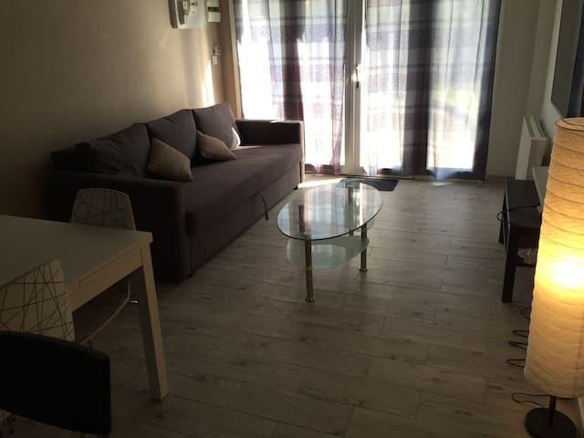 CLOSE TO GENEVA AIRPORT/PALEXPO Rdc - Ferney-Voltaire - Maison