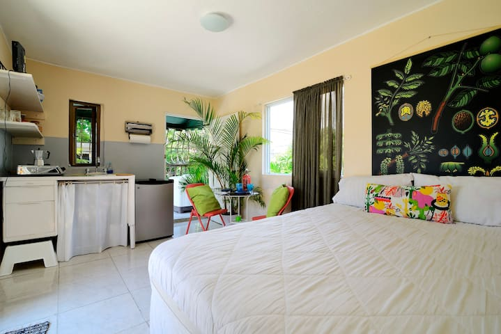 Studio with Wifi/ Air Conditioner - Saint-Domingue