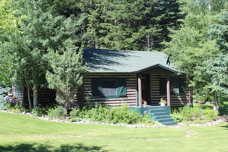 Charming Log Cabin and Bunkhouse
