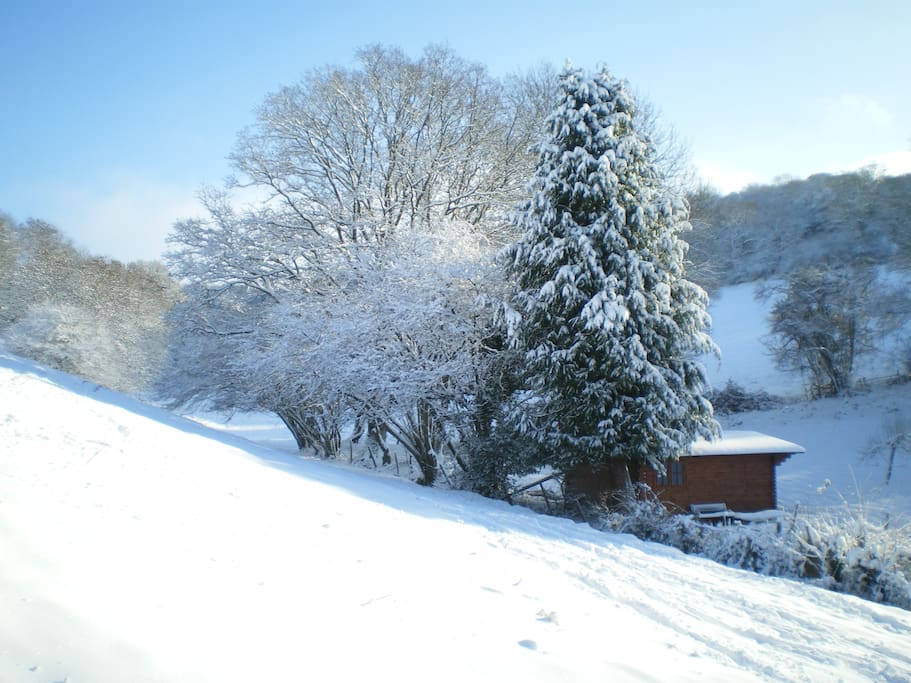 Just to give you an idea of the idyllic setting of the cabin, it just keeps giving.