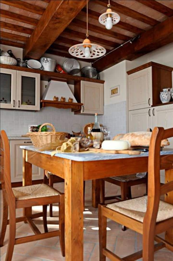 Tuscany Rental Apartment near Siena and Florence| Special Offer Early booking!!