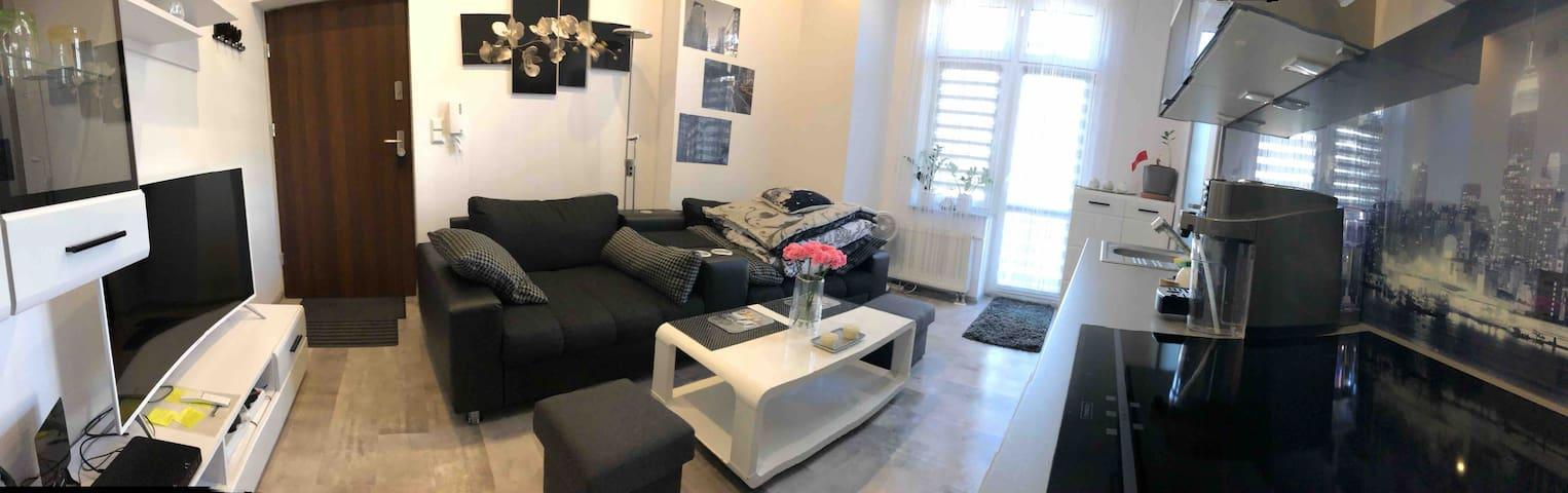 Smart-Apt Komfortowe mieszkanie w centrum Katowic